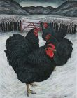 Seren Bell, Four Black Hens