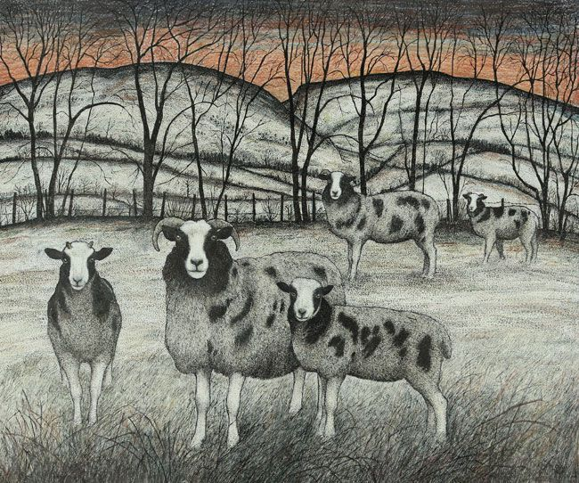 Seren Bell, Jacob Sheep