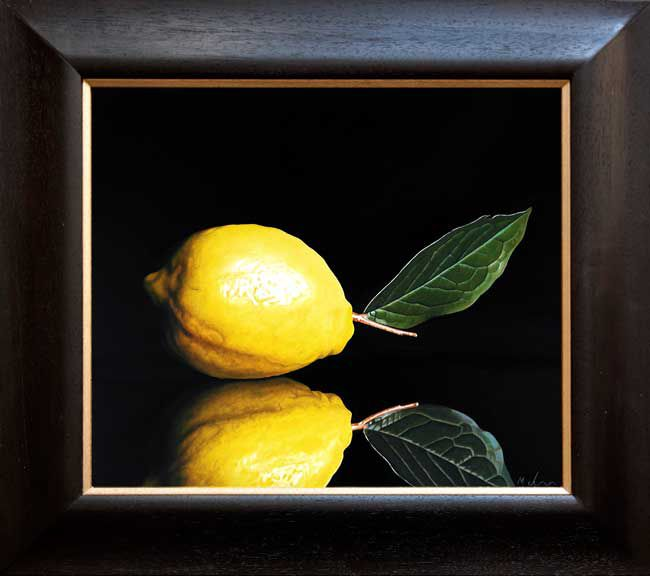 Michael de Bono, Lemon Reflected