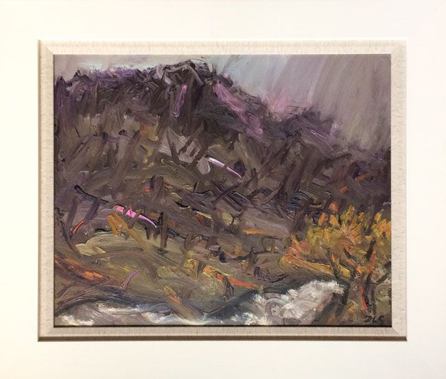 David Lloyd Griffith, Autumn Rain - Nant Peris