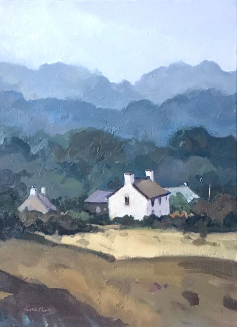 Gareth Thomas, House Near St David's