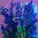 Penelope Timmis, Delhphiniums Blue