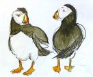 Penelope Timmis, Puffins