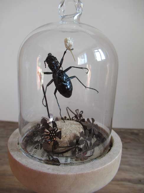 Jessica R Townsend, The Gentleman Beetle